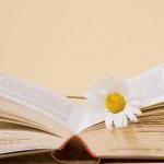 海外留学认证怎么弄呢,海外留学认证是什么?